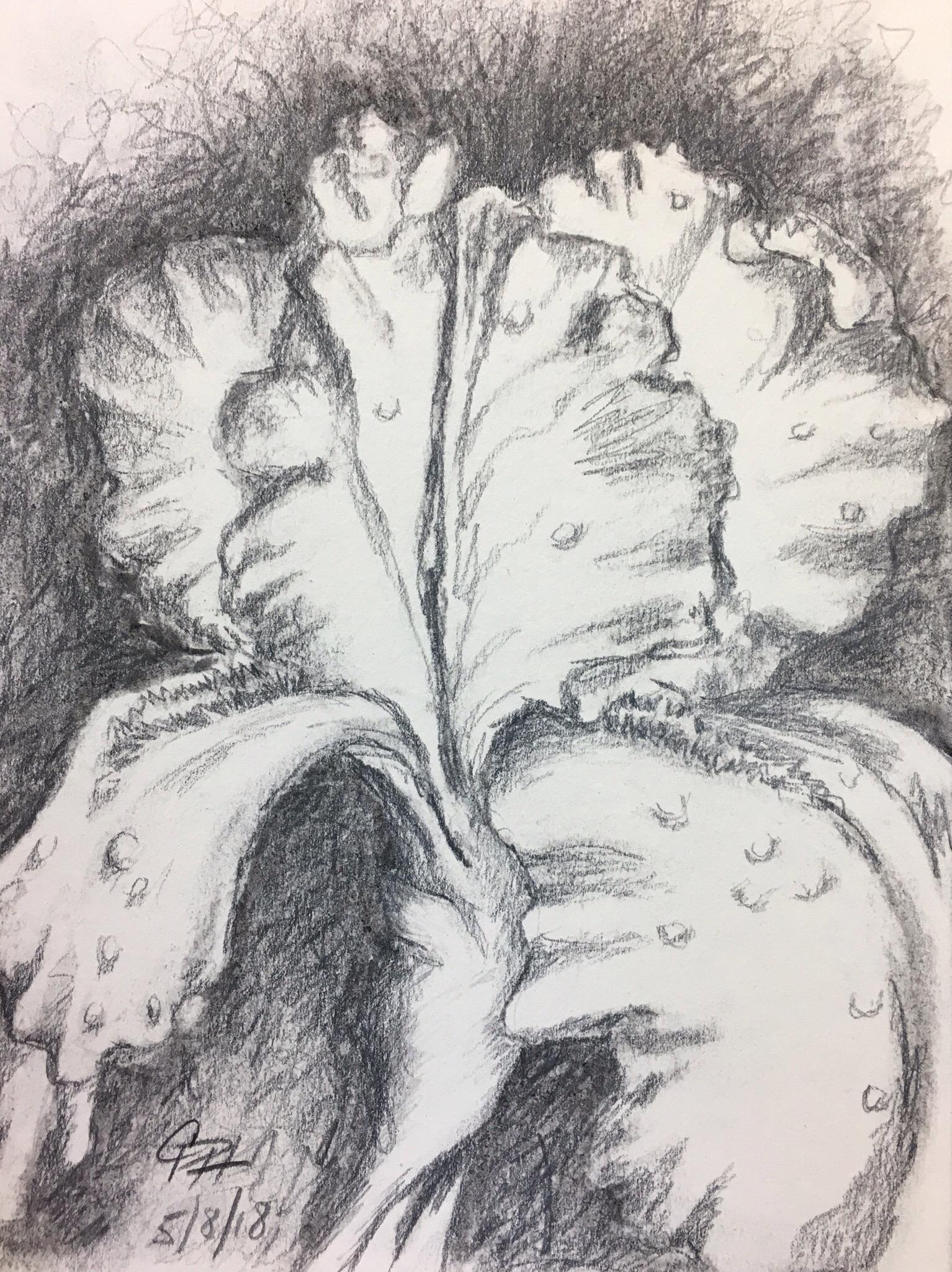 art – Pencils, Paint & Paper